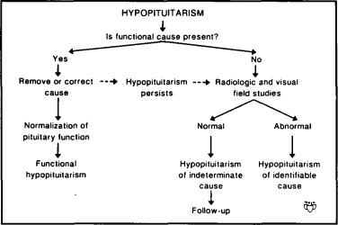 Hypopituitarism; Simmonds Disease; Sheehan Syndrome ...
